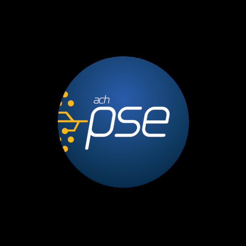 Resultado de imagen para logo PSE